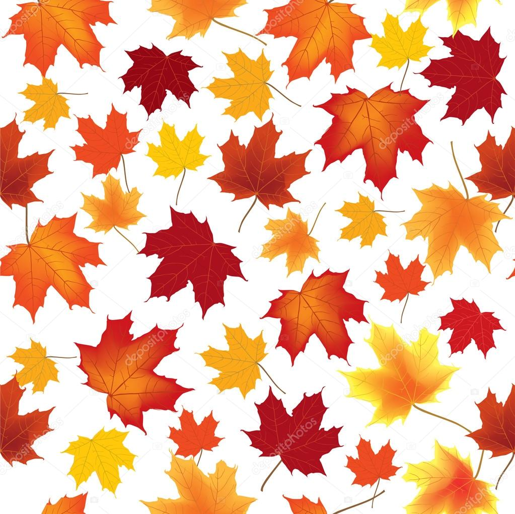 Autumn Fall Live Wallpaper Autumn Maple Leaves Seamless Vector Pattern Background