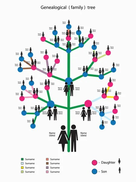 Family tree Stock Vectors, Royalty Free Family tree Illustrations