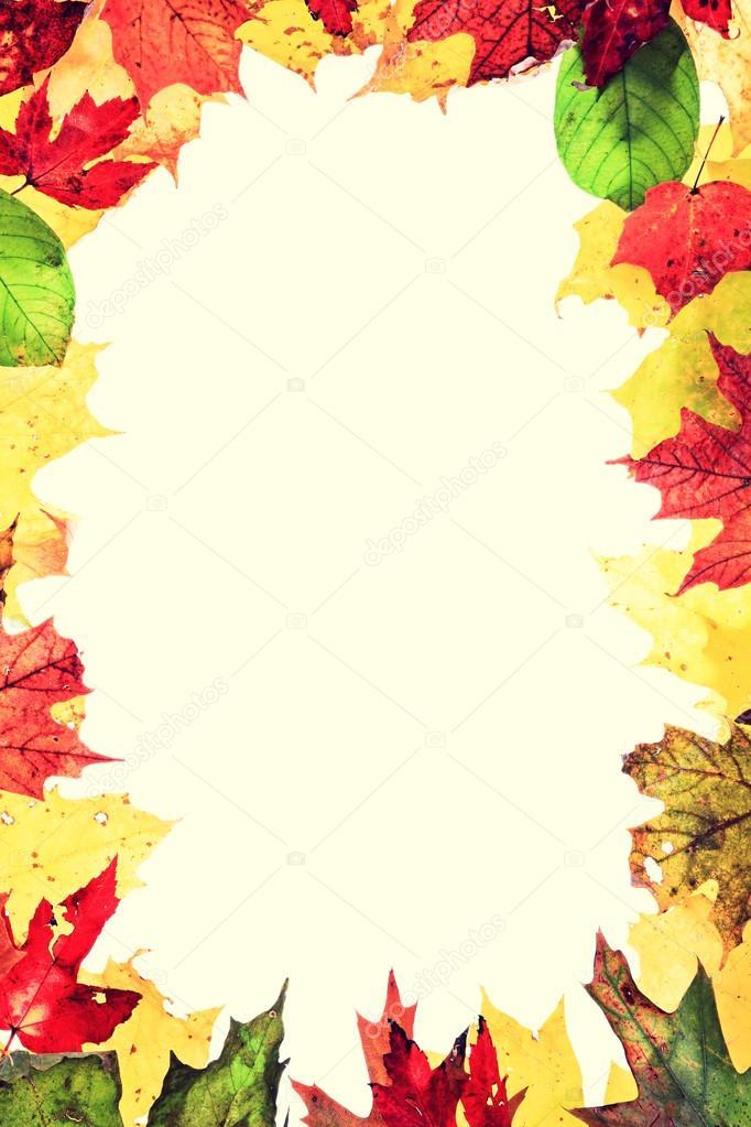 Fall Pumpkin Wallpaper Herbst Bl 228 Tter Rahmen Stockfoto 169 Maridav 34123577