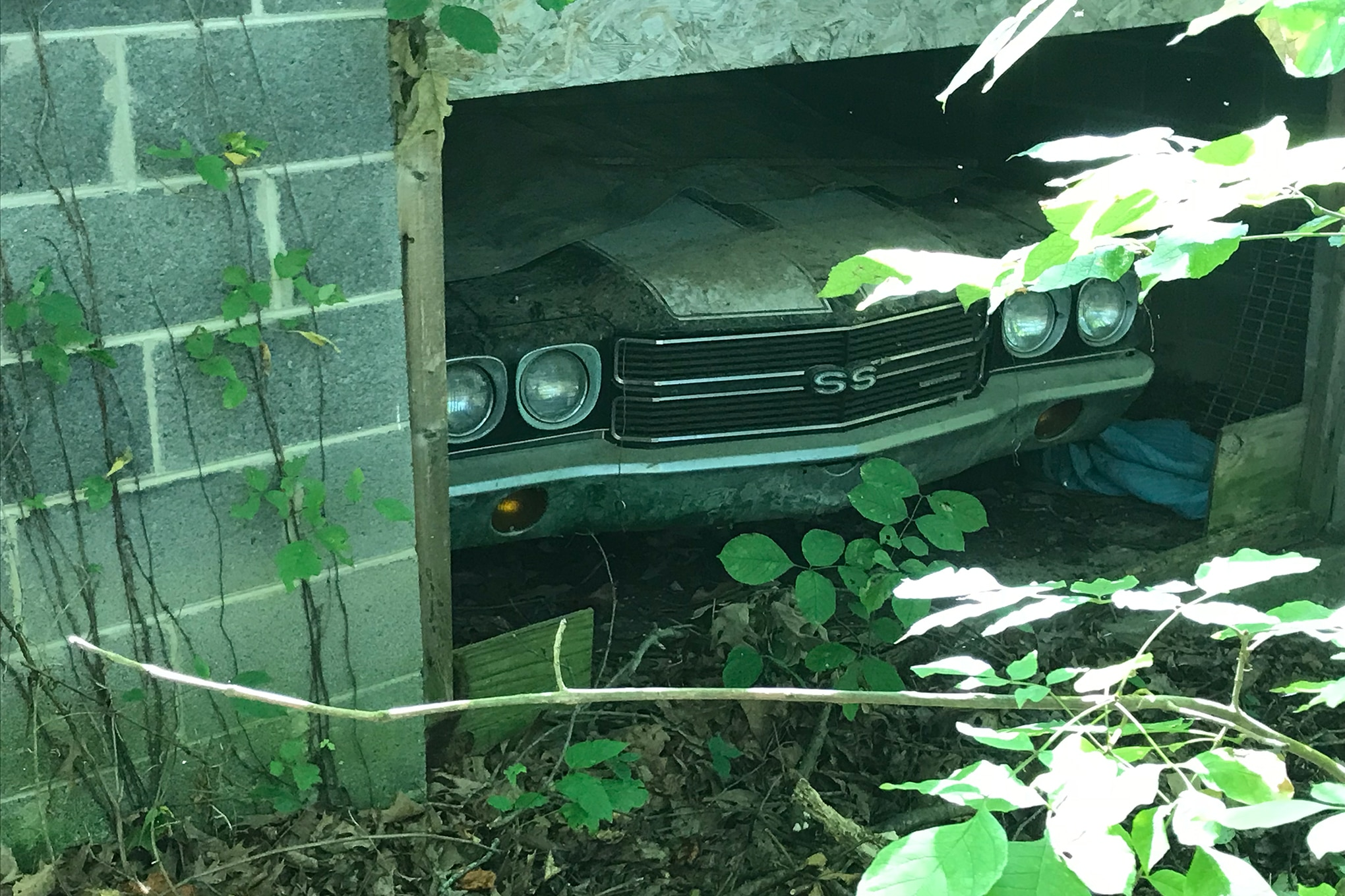 1970 El Camino Led Tail Lights 60 000 Mile 1970 Chevrolet El Camino Ls6 Found Behind Trees Hot