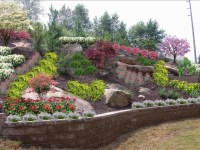 Landscaping ideas for front yard: Access Backyard hillside ...