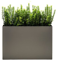 Outdoor Modern Planters