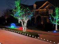 Unique Outdoor Holiday Decorations - Transitional ...