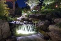 Pond and Landscape LED Lighting - Tropical - Landscape ...