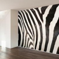 Zebra Print Wall Mural Decal contemporary-wall-decals
