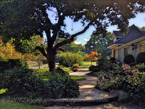 Front Yard Landscaping Ideas - Relaxing front yard