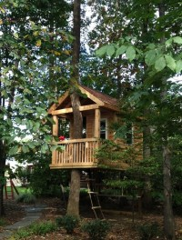 Tree House - Traditional - Kids - other metro - by Bianco ...