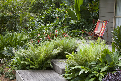 Front Yard Landscaping Ideas; tropical garden ideas