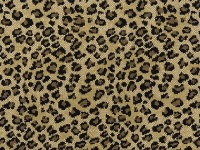 Leopard - Area Rugs - orange county - by Hemphill's Rugs ...