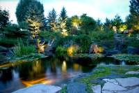 Pond and Landscape Lighting - Tropical - Landscape ...