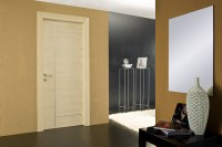 Flush Doors - Modern - Interior Doors - other metro - by ...