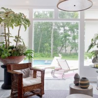 Top Tips for Arranging Indoor Plants