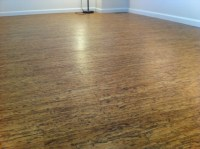 Cork Floor - Contemporary - Hardwood Flooring - denver