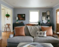 Grey Living Room Home Design Ideas, Pictures, Remodel and