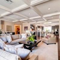 Transitional Las Vegas Living Room Design Ideas ...