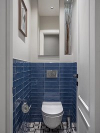75 Contemporary Blue Powder Room Design Ideas - Stylish ...