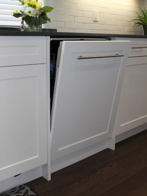 Ready Kitchen Cabinets Chicago Panel Ready Dishwasher | Houzz