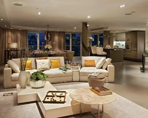 Open Plan Living Room Houzz - open concept living room