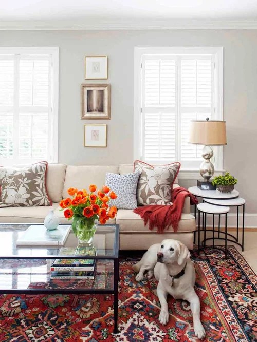 Beige Couch Houzz - beige couch living room