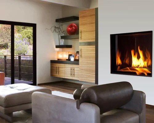 Propane Fireplace Houzz