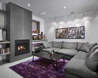 Basement Living Room Design Ideas & Remodel Pictures | Houzz