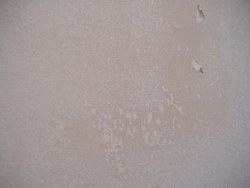 Wall Paint Over Wallpaper Glue