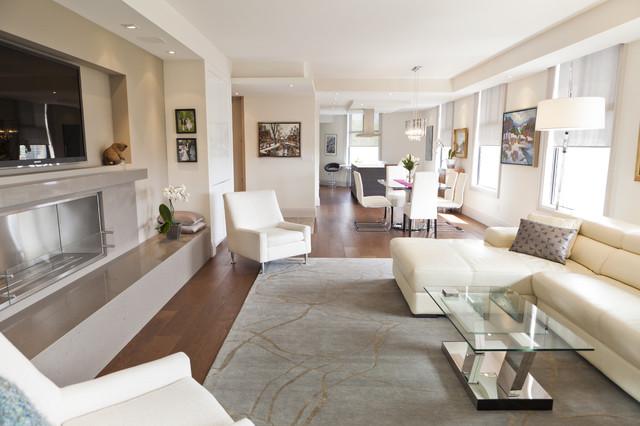 Luxurious condo living room contemporary living room