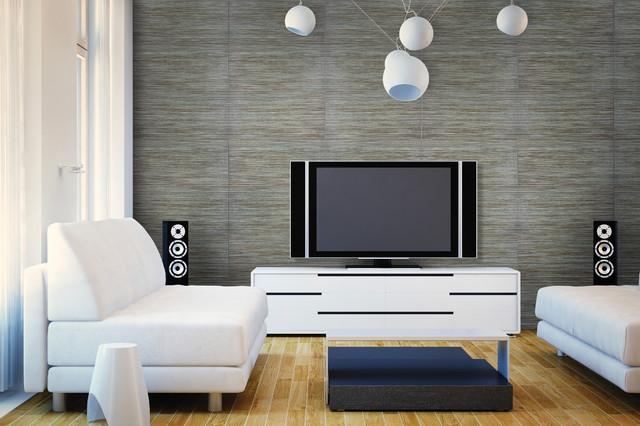 Accent Walls - Contemporary - Living Room - Denver - by Crossville - accent wall in living room