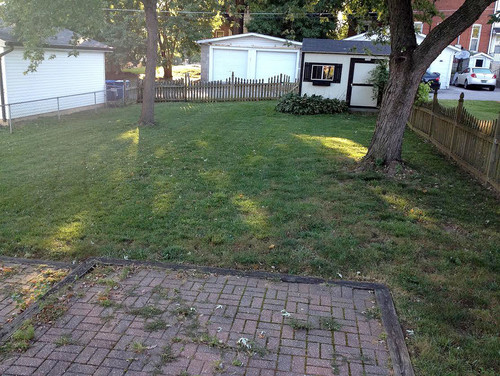 Advice On Aerating Lawn - Should I Hire? Can I Do It? Should I Buy?