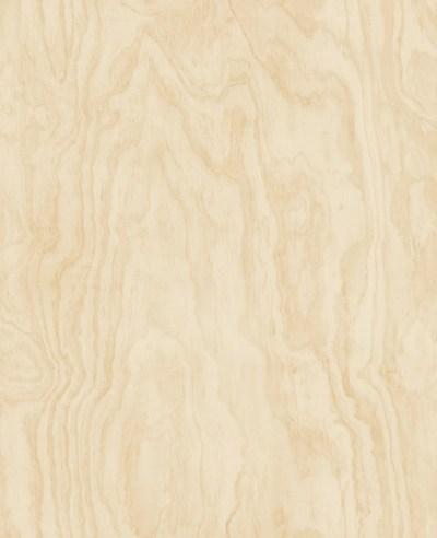 Bentham Neutral Plywood Wallpaper - Modern - Wallpaper - by Brewster Home Fashions