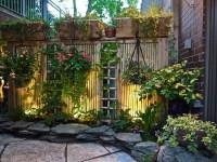 Asian style patio & garden - Asian - Landscape - Chicago ...