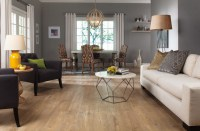 Laminate Flooring - Modern - Living Room - other metro ...