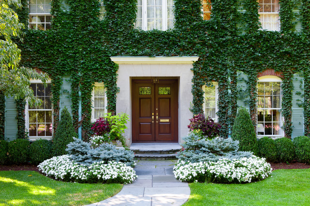 Care And Training For A Vine Covered Home