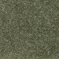 Light Green Carpet Wall Color - Carpet Vidalondon