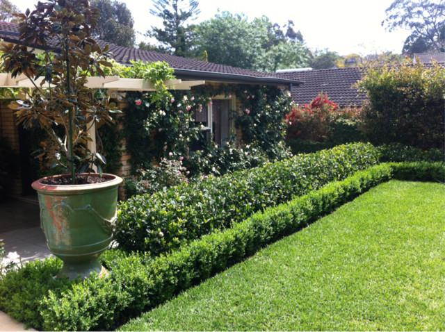 semi formal garden traditional landscape sydney