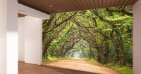 Wall murals - Traditional - Wallpaper - san francisco - by ...