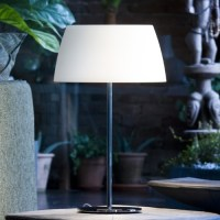 Ginger Glass T50 Table Lamp - Modern - Table Lamps - by ...