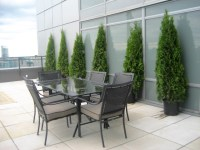 Sophisticated High Rise Condo & Terrace - Contemporary ...