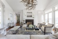 Cool Gray - Transitional - Living Room - San Francisco ...