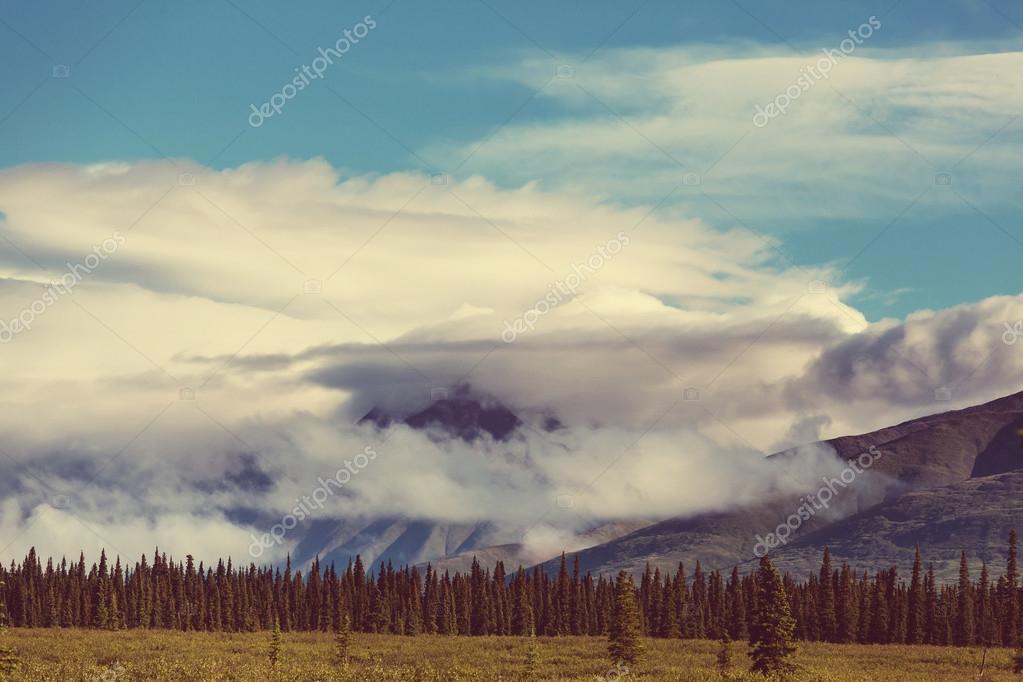 Serenity sunrise scene \u2014 Stock Photo © kamchatka #81682764