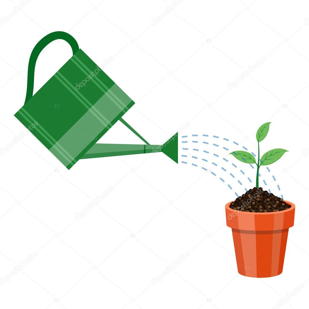 Plant Watering Cans Watering Can And Plant In The Pot Stock Vector