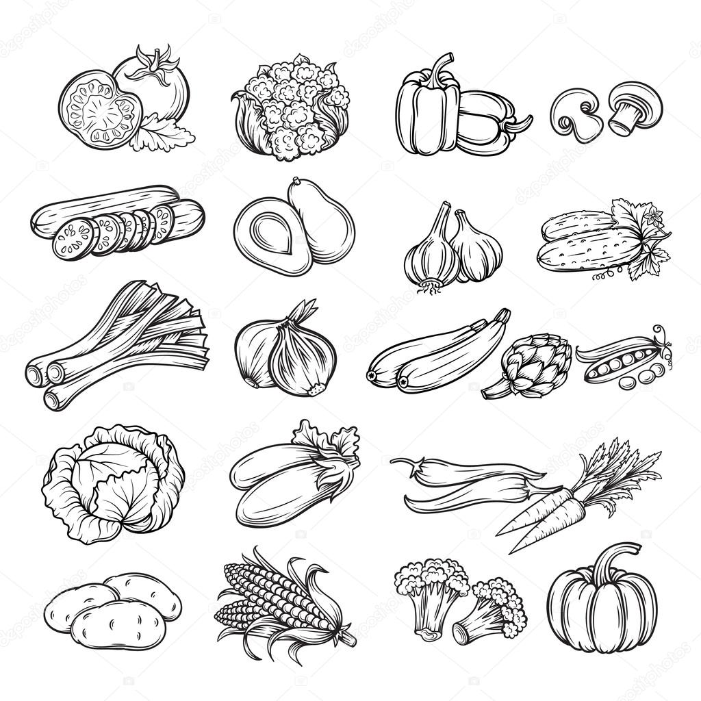 Küche Clipart Schwarz Weiß Hand Drawn Vegetable Stock Vector Tory 77493348