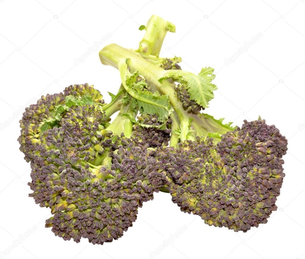 Broccoli Paars Paars Onder Leiding Van Broccoli Stockfoto Philkinsey 73475865