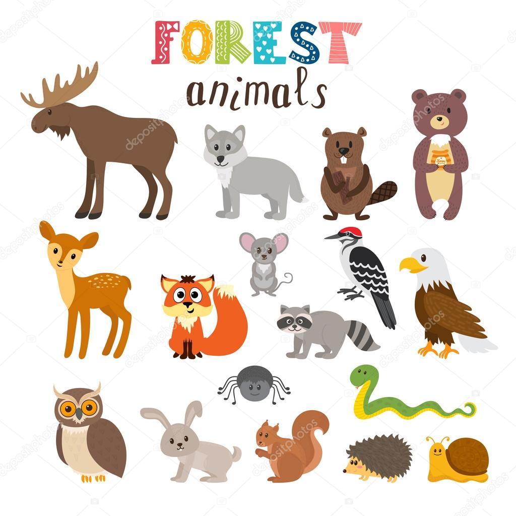 Cute Baby Pets Live Wallpaper Download Conjunto De Animales Del Bosque Lindo En Vector Bosques
