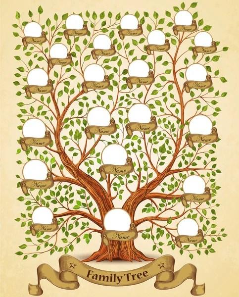 Family tree Stock Vectors, Royalty Free Family tree Illustrations