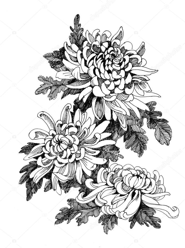 bonsai size classification