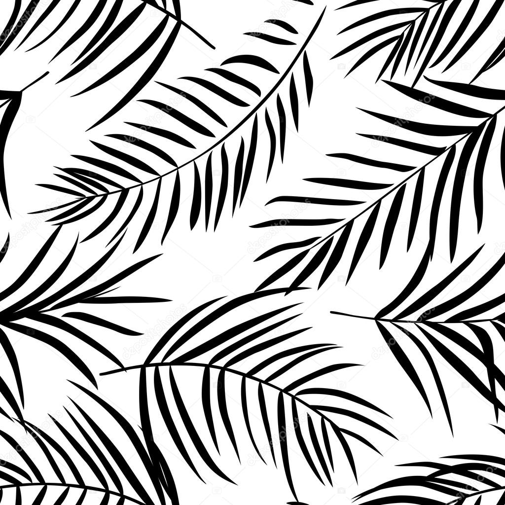 Cool Black And White Posters Tropical Palm Leaves Pattern Stock Vector Sonia Eps
