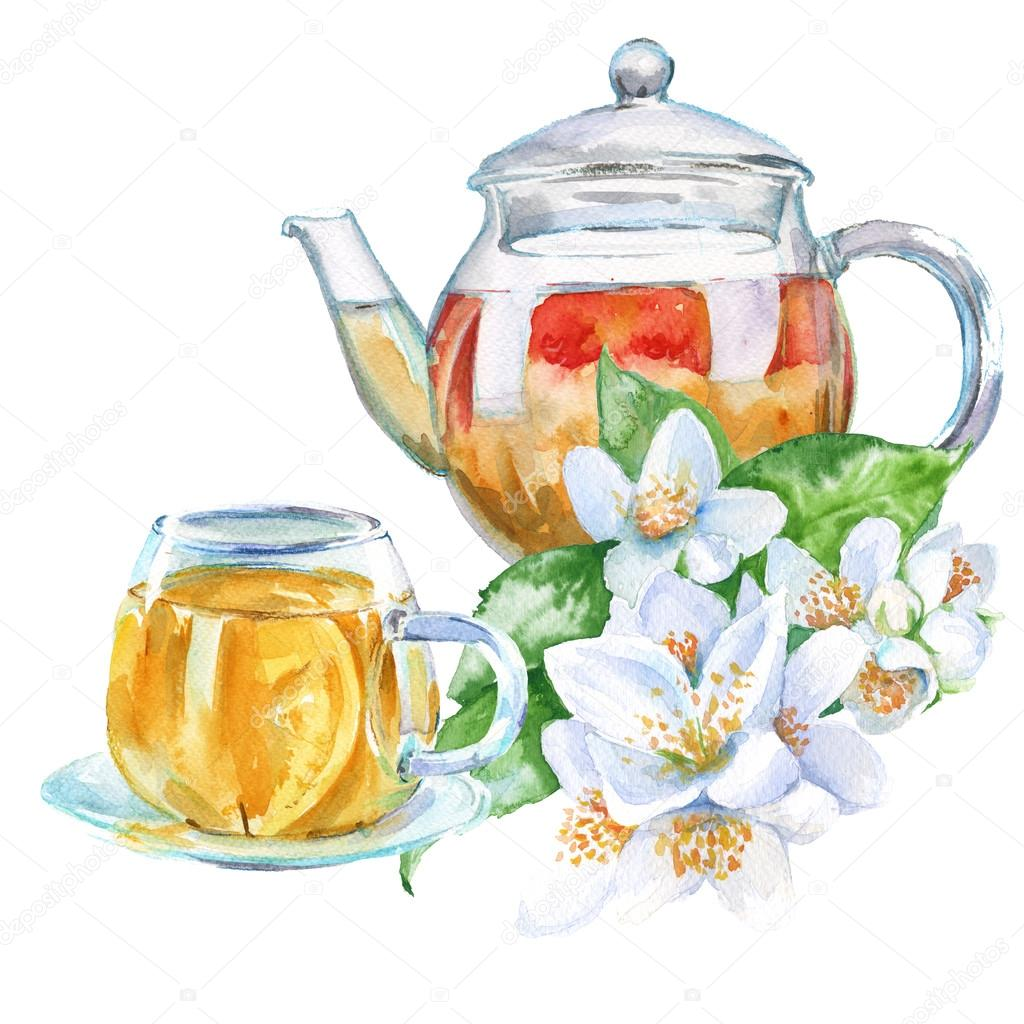 Teapot With Cup Teapot And Cup Green Tea With Jasmine Isolated Watercolor Ill