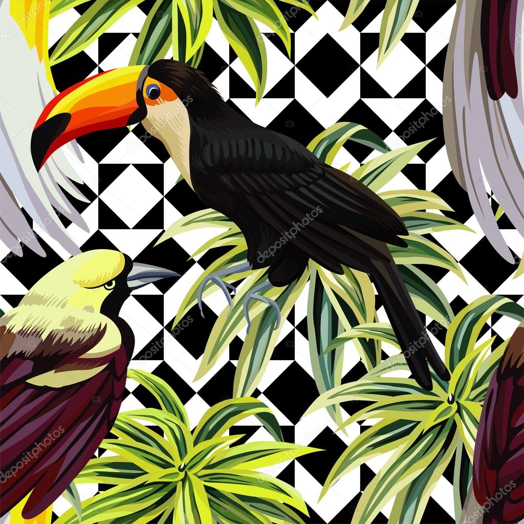 Bird Of Paradise Hd Wallpaper Motif Oiseaux Et De Plantes Tropical Fond G 233 Om 233 Trique