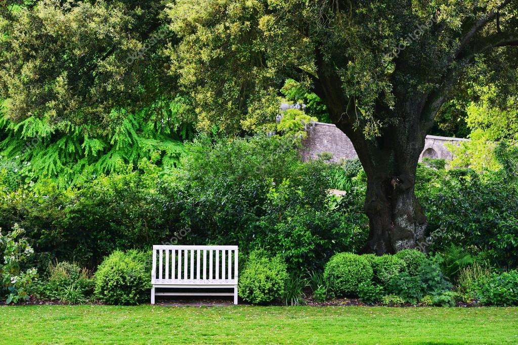 Grüne Gardine Peaceful Green Garden — Stock Photo © 1000words #107572934